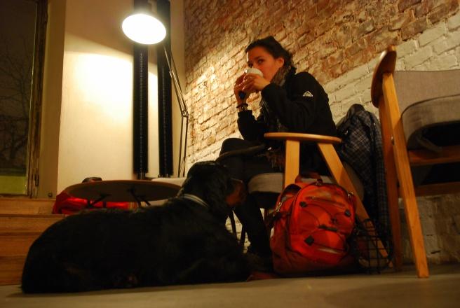 Wesoła Cafe
